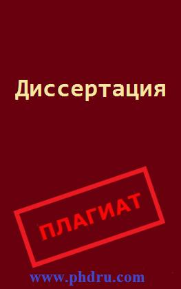 Диссер + плагиат